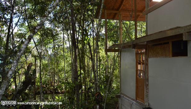 Foto casa nueva